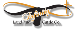 Infinity Land and Cattle